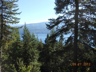 Photo 12: 3030 Vickers Trail in Anglemont: North Shuswap House for sale (Shuswap)  : MLS®# 10054853