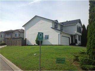 Photo 13: 22878 REID AV in Maple Ridge: East Central House for sale : MLS®# V1028587