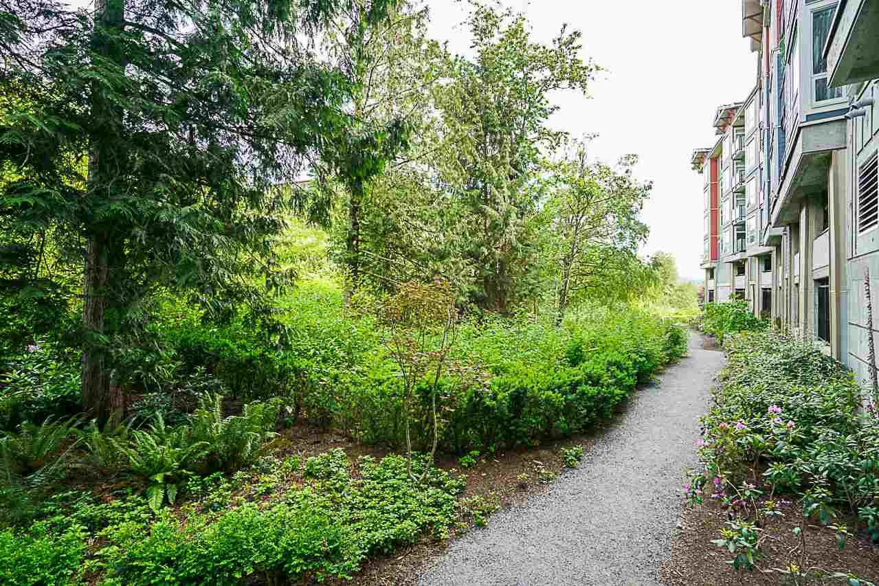 """Photo 18: Photos: 301 2238 WHATCOM Road in Abbotsford: Abbotsford East Condo for sale in """"Waterleaf"""" : MLS®# R2276818"""