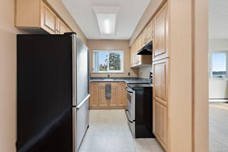 Photo 22: 103 615 Alder St in : CR Campbell River Central Condo for sale (Campbell River)  : MLS®# 872365
