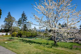 Photo 16: 1687 Centennary Dr in : Na Chase River House for sale (Nanaimo)  : MLS®# 873521