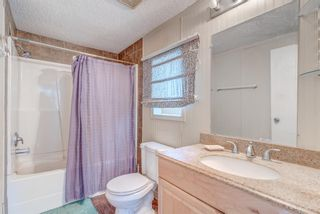 Photo 17: 214 Erin Woods Circle SE in Calgary: Erin Woods Detached for sale : MLS®# A1120105