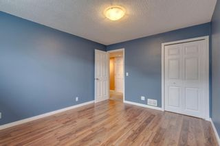 Photo 39: 1571 COPPERFIELD Boulevard SE in Calgary: Copperfield Detached for sale : MLS®# A1107569