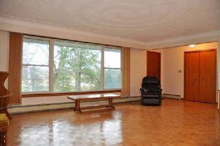 Photo 17: 3420 Cedar Springs Road in Burlington: Rural Burlington House (Bungalow-Raised) for sale : MLS®# W3072593