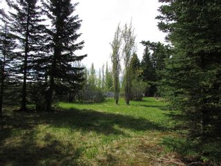 Photo 20: 127, 5241 TWP Rd 325A: Rural Mountain View County Land for sale : MLS®# C4299936