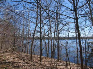 Photo 3: Lot 1 Highway 331 in Conquerall Bank: 405-Lunenburg County Vacant Land for sale (South Shore)  : MLS®# 202107962