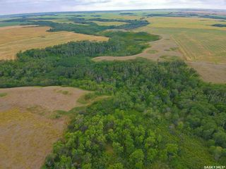 Photo 15: Rm Indian Head 160.39 acres in Indian Head: Farm for sale (Indian Head Rm No. 156)  : MLS®# SK867616