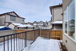 Photo 16: 458 Saddlelake Drive NE in Calgary: Saddle Ridge Detached for sale : MLS®# A1086829