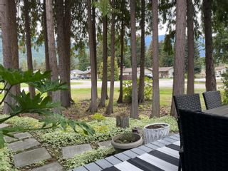 Photo 40: 802 Yew Avenue, in Sicamous: House for sale : MLS®# 10240260