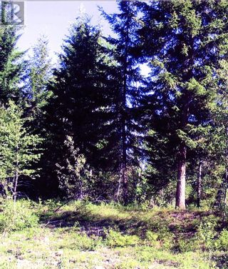 Photo 5: 8488 BLACK MOUNTAIN RD in Chase: Vacant Land for sale : MLS®# 163450