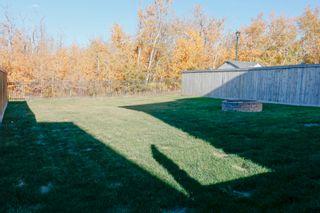 Photo 44: 3707 8 Street in Edmonton: Zone 30 House for sale : MLS®# E4265045