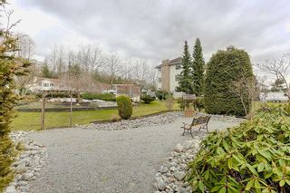 "Photo 19: 109 11578 225 Street in Maple Ridge: East Central Condo for sale in ""THE WILLOWS"" : MLS®# R2138956"