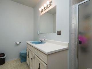 Photo 14: 4242 Cheverage Pl in : SE Lambrick Park House for sale (Saanich East)  : MLS®# 866472