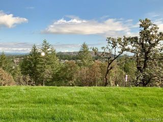 Photo 18: 2362 Azurite Cres in Langford: La Bear Mountain House for sale : MLS®# 825545