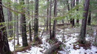 Photo 10: Lot B Mt. Matheson Rd in : Sk East Sooke Land for sale (Sooke)  : MLS®# 866391