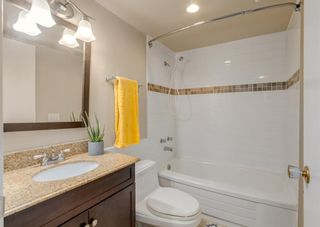 Photo 23: 3411 Doverthorn Road SE in Calgary: Dover Semi Detached for sale : MLS®# A1126939