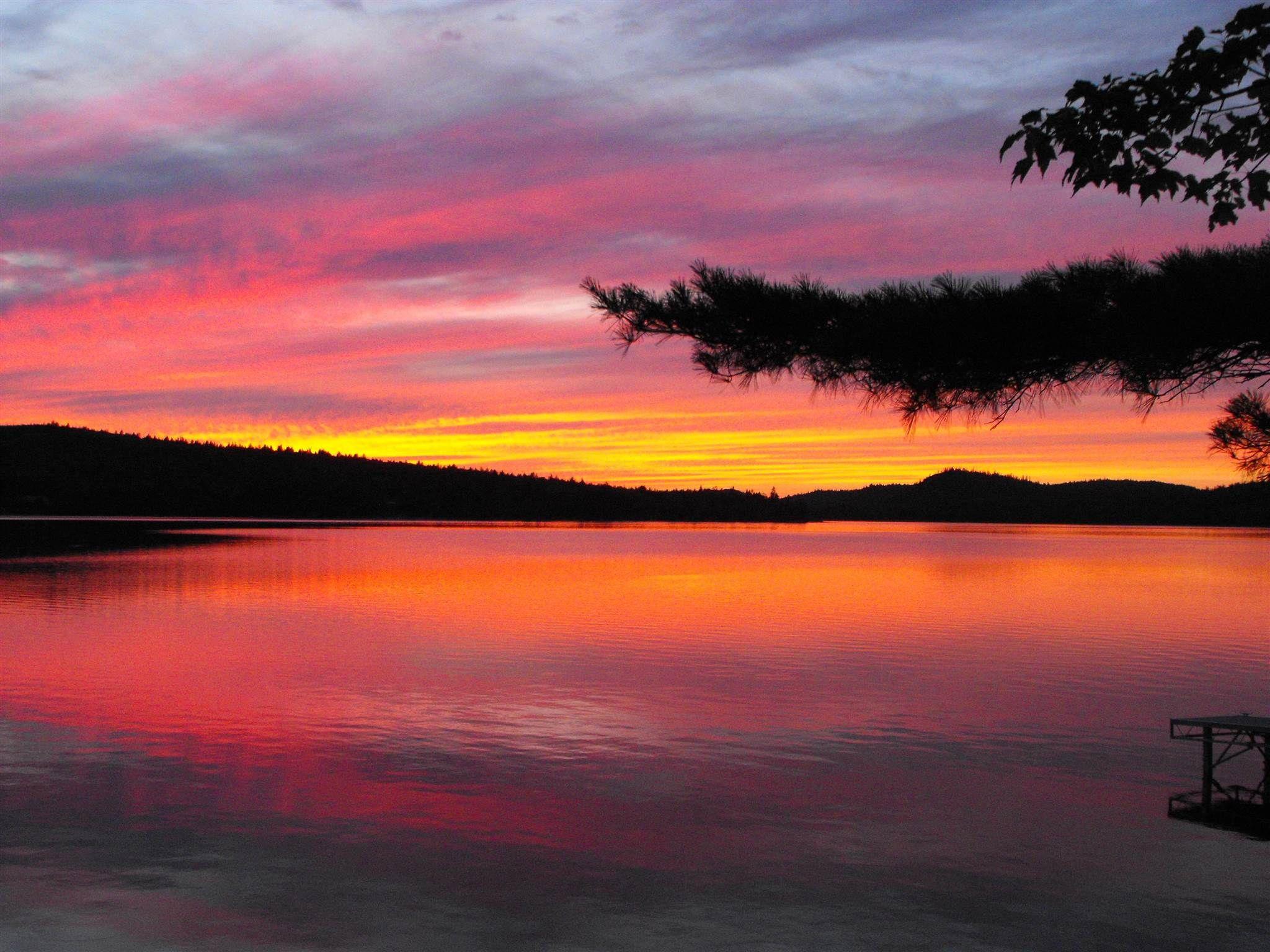Main Photo: 36 Alexander Lane in Gaetz Brook: 31-Lawrencetown, Lake Echo, Porters Lake Residential for sale (Halifax-Dartmouth)  : MLS®# 202116396