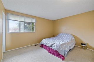 Photo 16: 2719 41A Avenue SE in Calgary: Dover Detached for sale : MLS®# A1132973