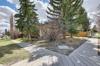 Photo 40: 455 Falconridge Crescent NE in Calgary: Falconridge Detached for sale : MLS®# A1103477