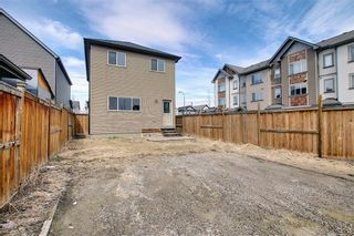 Photo 45: 484 COPPERPOND BV SE in Calgary: Copperfield House for sale : MLS®# C4292971