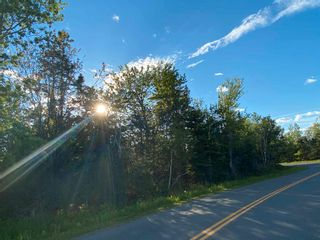Photo 16: 16 acres Caribou Island Road in Caribou Island: 108-Rural Pictou County Vacant Land for sale (Northern Region)  : MLS®# 202104068