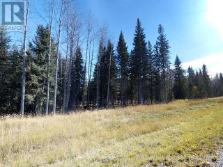 Photo 14: 53018 RANGE RD 175 in Rural Yellowhead County: Vacant Land for sale : MLS®# AW38443