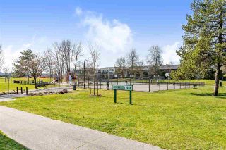 Photo 14: 209 11510 225 Street in Maple Ridge: East Central Condo for sale : MLS®# R2446932