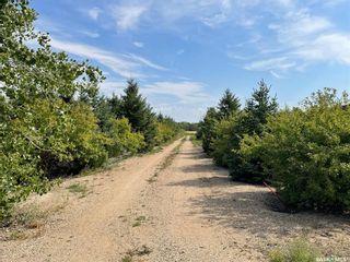 Photo 9: 216 Kestrel Court in Rosthern: Lot/Land for sale : MLS®# SK868374