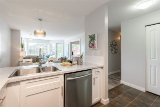 """Photo 14: 205 1369 GEORGE Street: White Rock Condo for sale in """"Cameo Terrace"""" (South Surrey White Rock)  : MLS®# R2458230"""