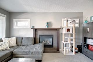 Photo 7: 180 Evanspark Gardens NW in Calgary: Evanston Detached for sale : MLS®# A1144783