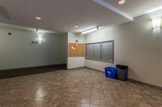 Photo 31: 304 1188 HYNDMAN Road in Edmonton: Zone 35 Condo for sale : MLS®# E4236609