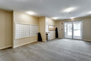 Photo 4: 4319 403 Mackenzie Way SW: Airdrie Apartment for sale : MLS®# A1067372