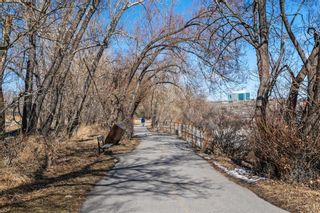 Photo 27: 120 63 Inglewood Park SE in Calgary: Inglewood Apartment for sale : MLS®# A1089695