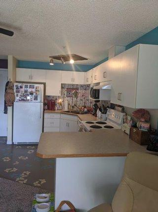 Photo 4: 310, 11325 83 Street in Edmonton: Condo for rent