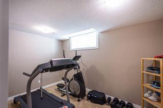 Photo 28: 17419 110 Street in Edmonton: Zone 27 House for sale : MLS®# E4257964