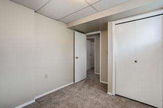 Photo 21: 5112 Whitehorn Drive NE in Calgary: Whitehorn Detached for sale : MLS®# A1135680