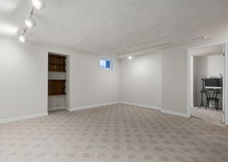 Photo 27: 124 QUEEN TAMARA Road SE in Calgary: Queensland Detached for sale : MLS®# A1086377