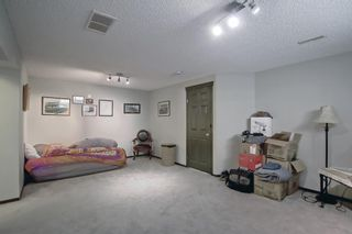 Photo 34: 2500 Sagewood Crescent SW: Airdrie Detached for sale : MLS®# A1152142