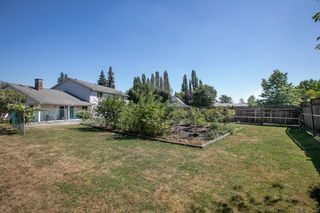 Photo 33: 21942 127 Avenue in Maple Ridge: West Central House for sale : MLS®# R2613779