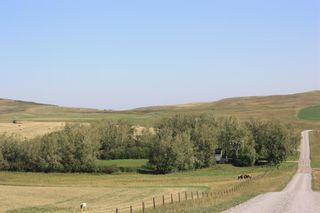 Photo 6: For Sale: 4410 Rge Rd 295, Rural Pincher Creek No. 9, M.D. of, T0K 1W0 - A1144475