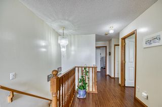 Photo 18: 23 Citadel Meadow Grove NW in Calgary: Citadel Detached for sale : MLS®# A1149022