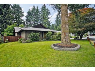 Photo 59: 34741 IMMEL Street in Abbotsford: Abbotsford East House for sale : MLS®# F1321796