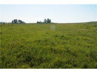Photo 4: 262034 80 St E in DE WINTON: Rural Foothills M.D. Rural Land for sale : MLS®# C3631915