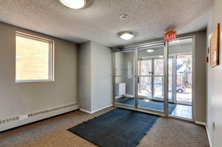 Photo 14: 302 534 20 Avenue SW in Calgary: Cliff Bungalow Apartment for sale : MLS®# A1089543