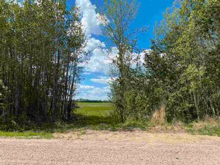 Photo 1: NE 34-49-27-W4 none: Rural Leduc County Rural Land/Vacant Lot for sale : MLS®# E4246771
