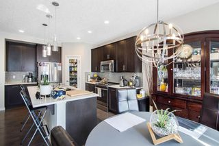 Photo 15: 459 Nolan Hill Drive NW in Calgary: Nolan Hill Detached for sale : MLS®# A1085176