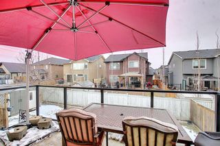 Photo 43: 164 Aspenmere Close: Chestermere Detached for sale : MLS®# A1130488
