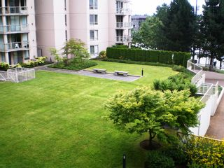 """Photo 41: # 303 - 1189 Eastwood Street in Coquitlam: North Coquitlam Condo for sale in """"THE CARTIER"""" : MLS®# V844049"""