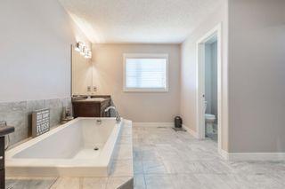Photo 31: 8515 216 Street in Edmonton: Zone 58 House for sale : MLS®# E4264294