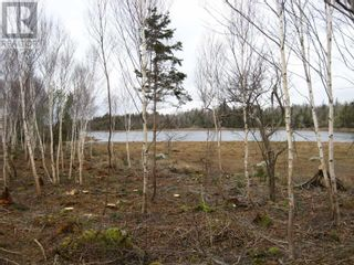 Photo 1: Lot East Port Loop Road in East Port Medway: Vacant Land for sale : MLS®# 202000583